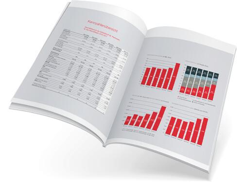 Geschäftsbericht Design. Sehen Sie einen Geschäftsbericht, der von Marlene Kern Design gestaltet und realisiert wurde.